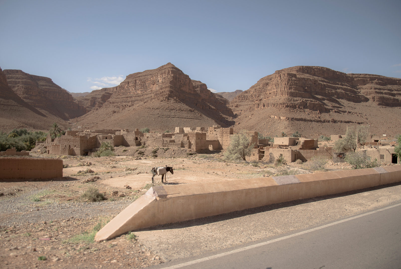 A donkey in the village in the Atlas Mountains of Morocco